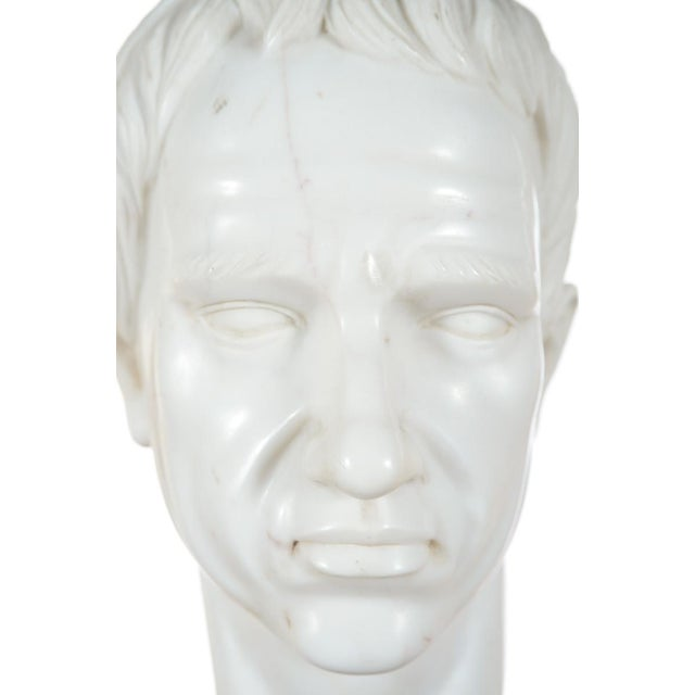 Roman Emperor Marble Bust For Sale - Image 9 of 10