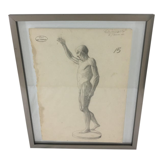 19th Century French Medical Drawing of Front Muscular Structure For Sale