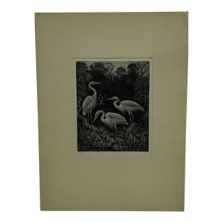"Benson B. Moore Limited Edition Original ""White Herons at Home"" Signed Etching For Sale"