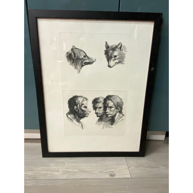 Man as Fox - Physiognomic Heads Series Framed Illustration by Charles Le Bru For Sale - Image 11 of 11