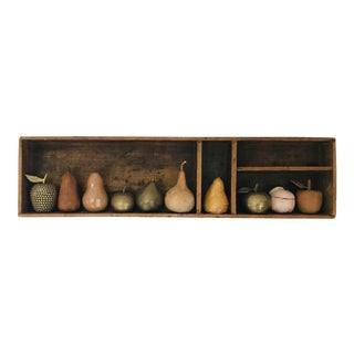 5 Apples & 5 Pears Composition Box For Sale
