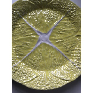 Vintage Yellow Cabbage Leaf Plate Preview
