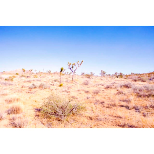 Contemporary Desert Plains Photograph For Sale - Image 3 of 3