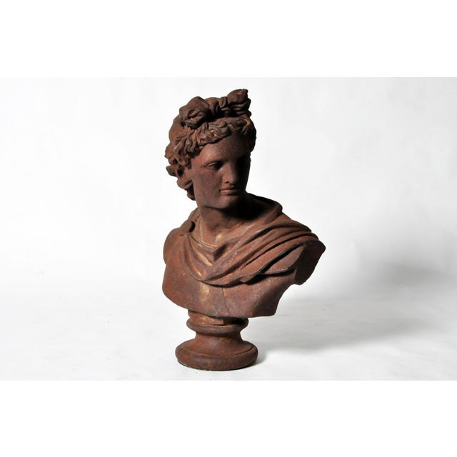 Iron Bust of Apollo Belvedere - Image 3 of 11