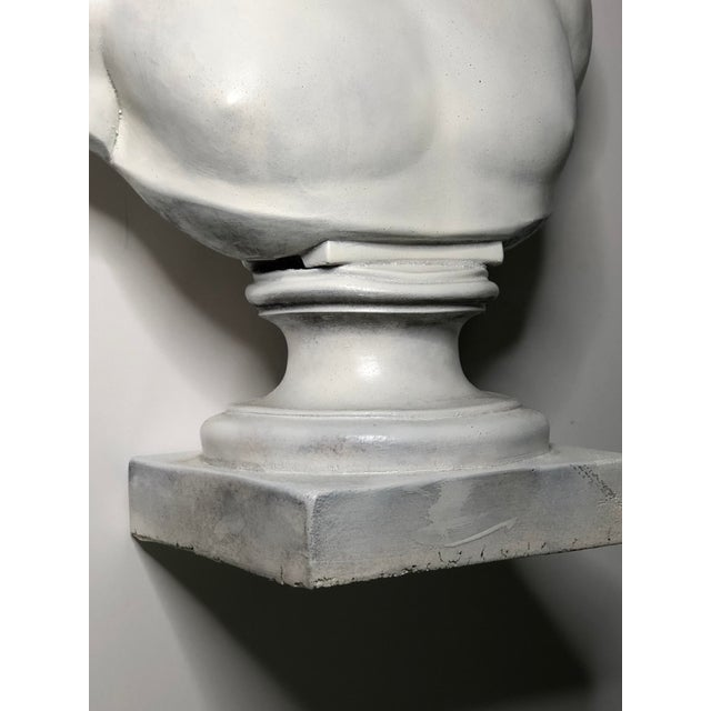 1940s Vintage Neoclassical Style Plaster Bust of Apollo Sculpture For Sale In Los Angeles - Image 6 of 12