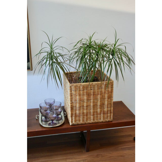 Boho Chic Modernist Wicker Cube Planter / Side Table For Sale - Image 3 of 13