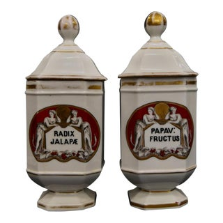Antique French Apothecary Jars- A Pair For Sale