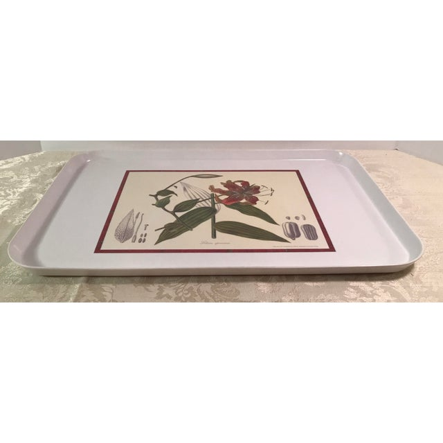 Red Vintage Royal Horticulture Society Collection Tray For Sale - Image 8 of 11