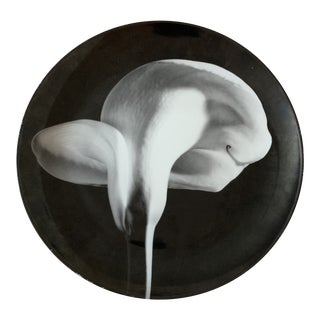 "Robert Mapplethorpe Calla Lily Plate by Swid Powell - 12"" For Sale"