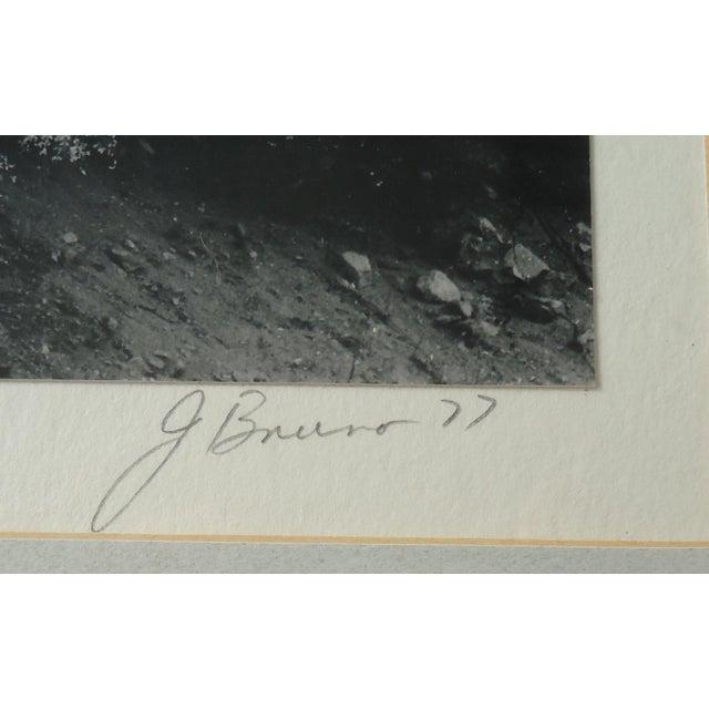 "Framed ""Huachaca Canyon"" Photograph - Image 5 of 5"