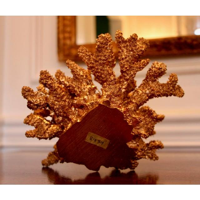 Designer Gilded Coral - Image 6 of 7