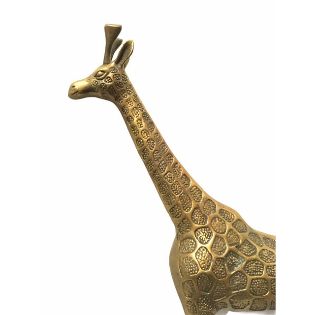 1970s Vintage Mid-Century Brass Giraffe For Sale - Image 5 of 8