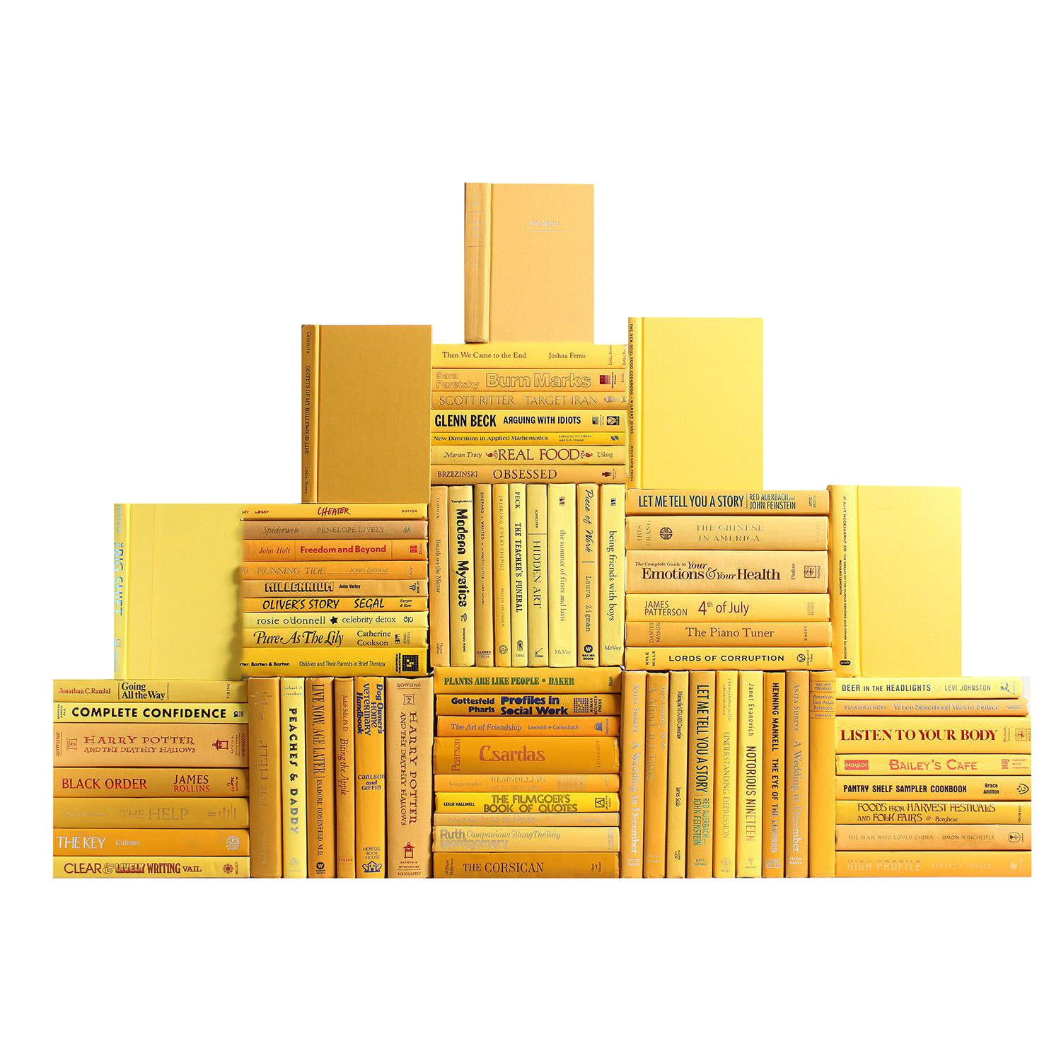 Modern Daffodil Book Wall : Set of Seventy Five Decorative Books ...
