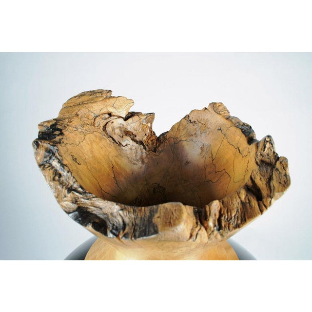 Spalted Maple & Black Lacquered Wood Vase For Sale - Image 5 of 7