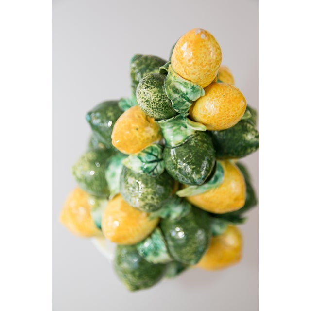 Cottage Vintage Italian Majolica Lemon & Lime Topiary For Sale - Image 3 of 7