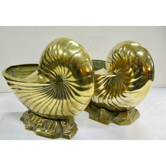 Hollywood Regency Vintage Huge Brass Nautilus Seashell Planters - a Pair For Sale - Image 3 of 14