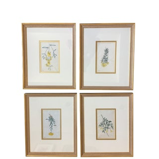Late 18th Century Traditional Botanical Prints - Set of 4 For Sale