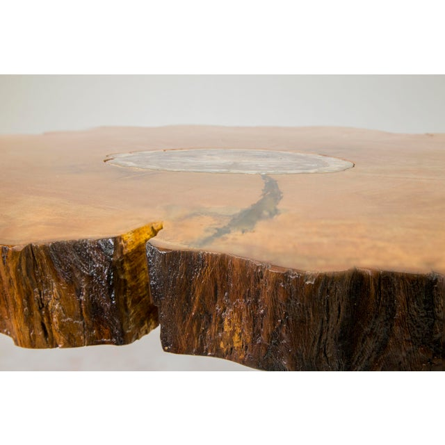 Brown Petrified Wood Inlay Sycamore Table For Sale - Image 8 of 8