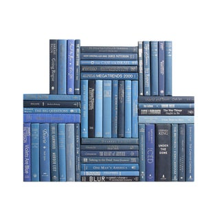 Modern Summit Book Wall : Set of Fifty Decorative Books in Blue and Silver