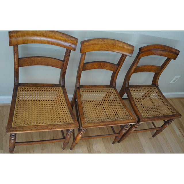 Antique Cane Seat Dining Chairs - Set of 3 For Sale - Image 4 of 13 - Antique Cane Seat Dining Chairs - Set Of 3 Chairish