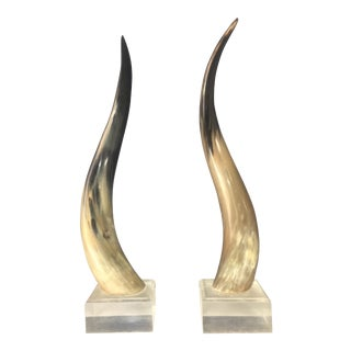 Steer Horns Mounted on Lucite Bases - A Pair