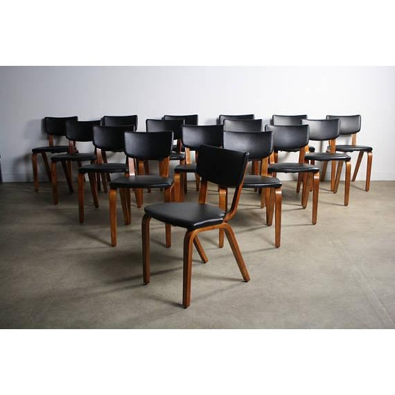 About the Set of Sixteen (16) Thonet Bentwood Chairs These are so much fun. The sturdy build and tasteful lines are true...