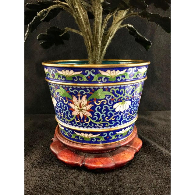 """Vintage Chinese Chrysanthemum Jade Tree With Cloisonné Pot and Stand - 24"""" Tall For Sale - Image 9 of 12"""
