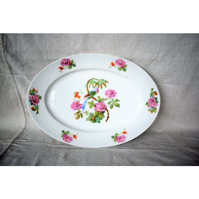 Boho Chic 1930s Vintage Victoria China Parrot Platter For Sale - Image 3 of 7