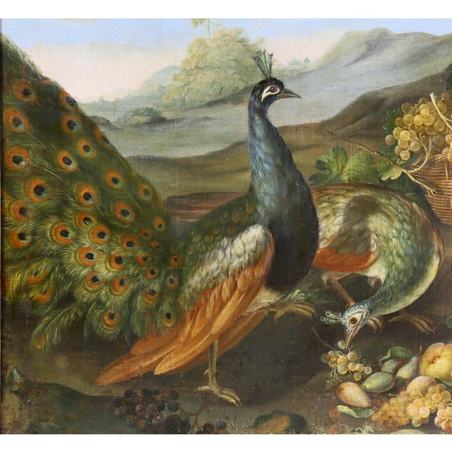 Late 18th Century Large Flemish Oil on Canvas of Peacocks and Fruit in Landscape For Sale - Image 5 of 11