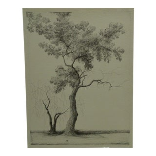 "Late 20th Century Vintage ""This Old Tree"" Print by Cabeute Liuxert For Sale"