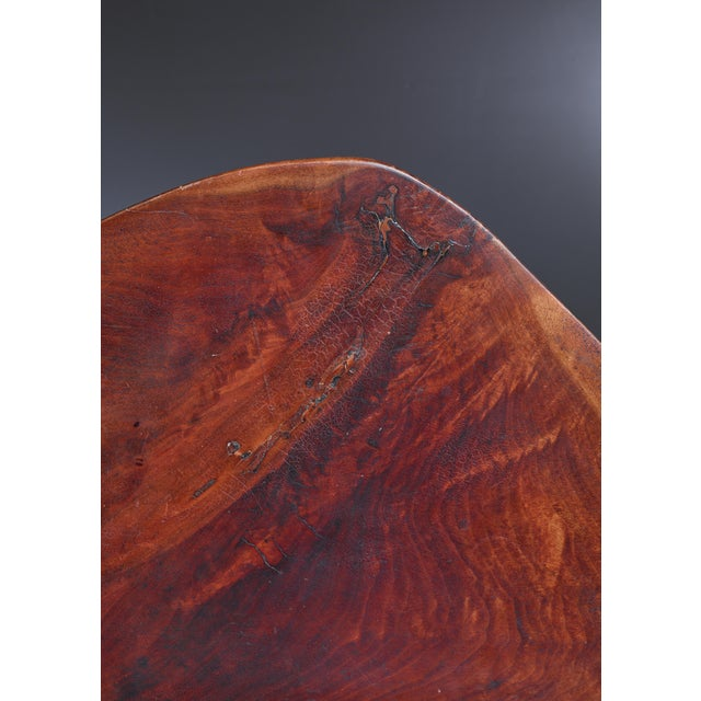 Brown Emil Milan Freeform root wood coffee table, USA, 1960s For Sale - Image 8 of 9