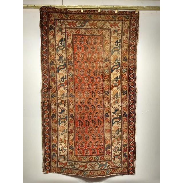 19th Century Kazak Rug 3′1″ × 5′6″ For Sale - Image 13 of 13