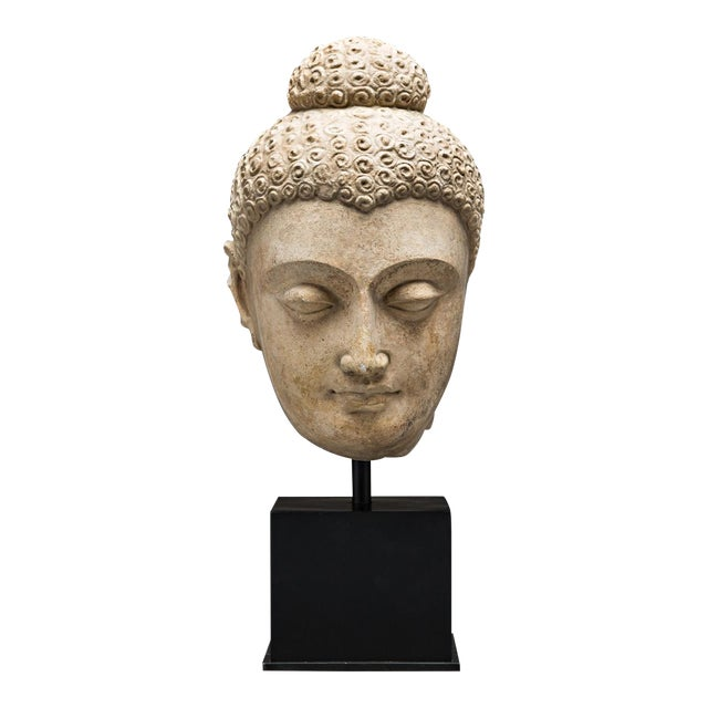Gandhara Stucco Head of a Buddha For Sale