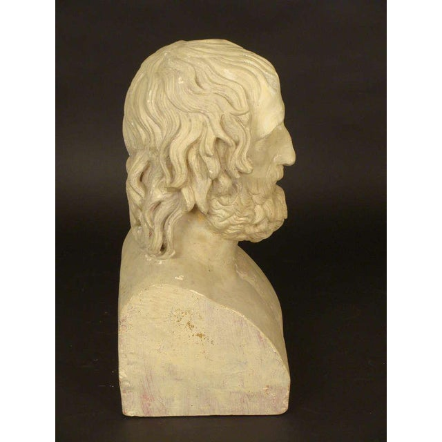 Composition Bust of Euripides - Image 4 of 11