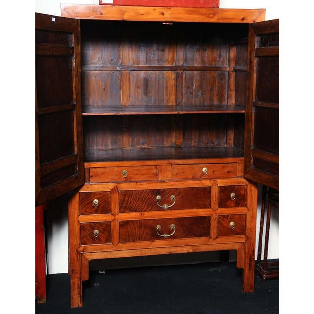 Large Chinese Hebei Burl Wood Paneled Cabinet With Brass Hardware C. 1900 For Sale - Image 9 of 11