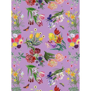 Nicolette Mayer for Scalamandre Flora & Fauna, Orchid Wallpaper For Sale