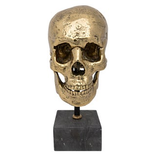 Skull on Stand, Brass For Sale