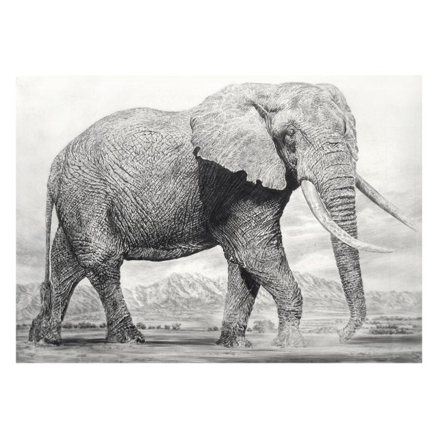 """Mid-Century Modern Contemporary """"Elephant I"""" Rick Shaefer Charcoal Print For Sale - Image 3 of 3"""