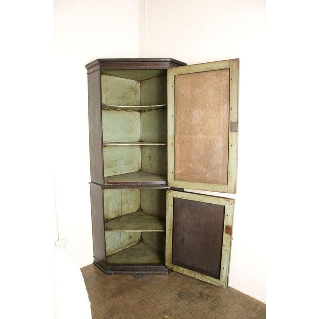 19th Century English Corner Cupboard with Faux Front Panel Door For Sale - Image 9 of 13