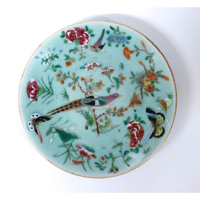 19th Chinese Export Rose Canton Celadon Porcelain Plates - Set of 3 For Sale - Image 9 of 12