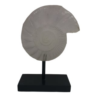 1990s Lucite Sea Shell Sculpture For Sale