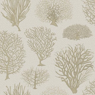 Cole & Son Seafern Curio Classic Wallpaper - 11 Yards For Sale