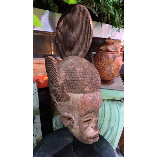 African Ceremonial Igbo Tribe Wooden Mask For Sale - Image 3 of 7