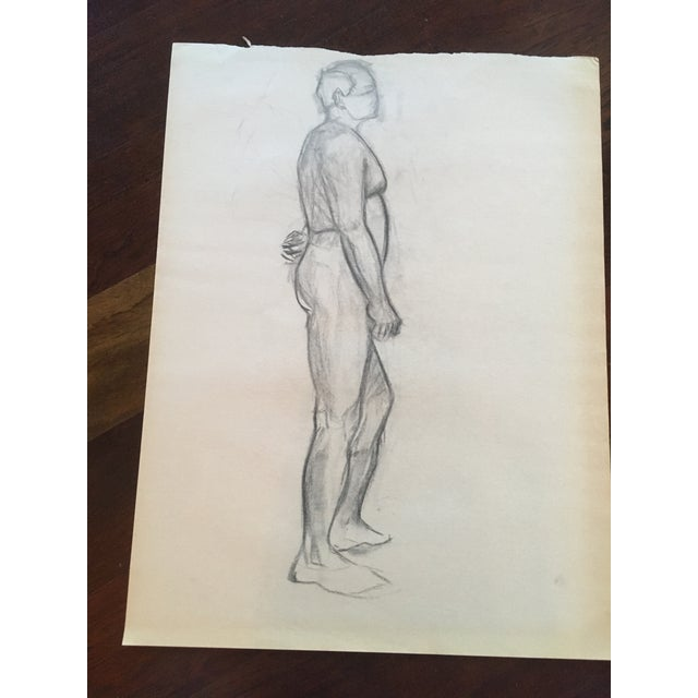Vintage Large Mid-Century / Realism Nude Anatomy Figure Drawing For Sale - Image 4 of 6