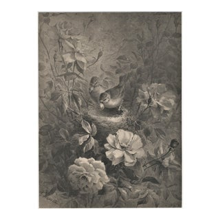 Pair-Matted 1885 Unusual Botanical Lithographs -Birds Nesting in Roses For Sale