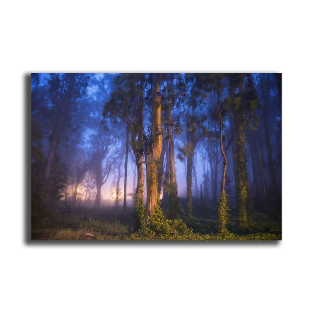 "Garret Suhrie ""Enchanted Forest"" Floating Print - Image 2 of 2"