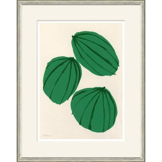 Melons Framed Art Print For Sale