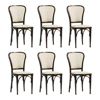 Dining Chairs by Gustav Siegel for Thonet, 1910 - Set of 6 For Sale