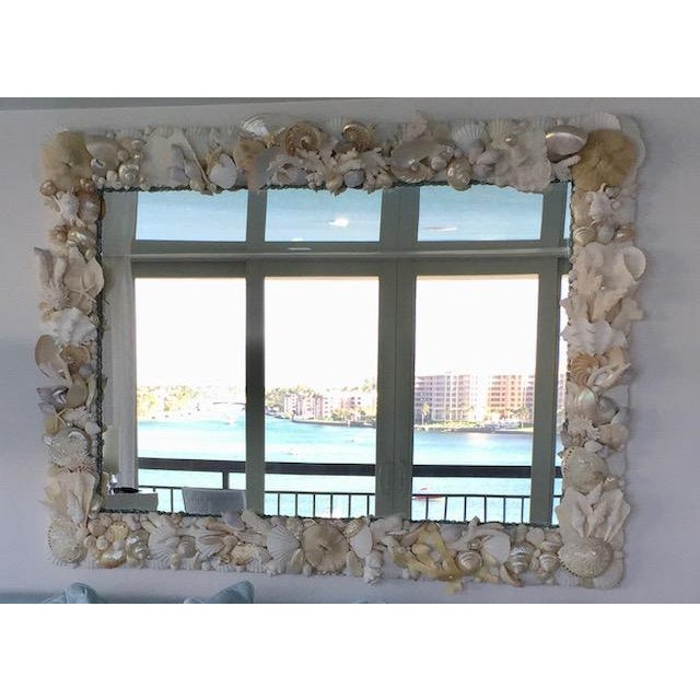 Large Horizontal Seashell & Coral Mirror For Sale - Image 10 of 10