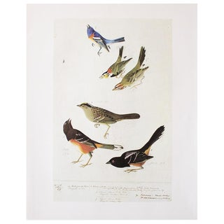 1966 Birds of America by John James Audubon For Sale